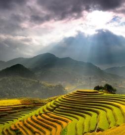 Bán vỏ Michelin Tỉnh Hà Giang