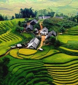Bán vỏ xe Michelin Tỉnh Lào Cai